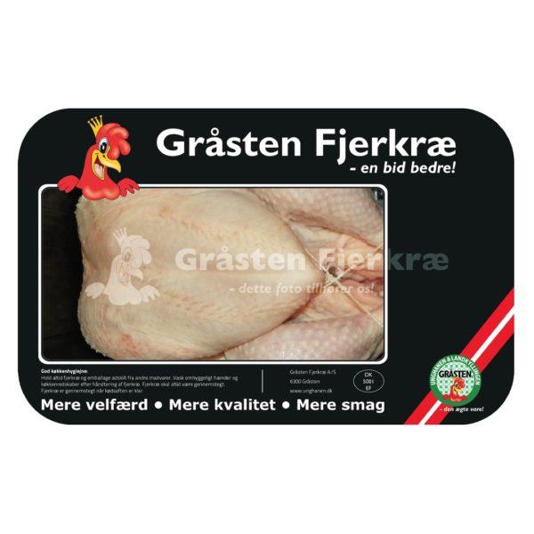 gf-kylling-hanekylling-detail-min
